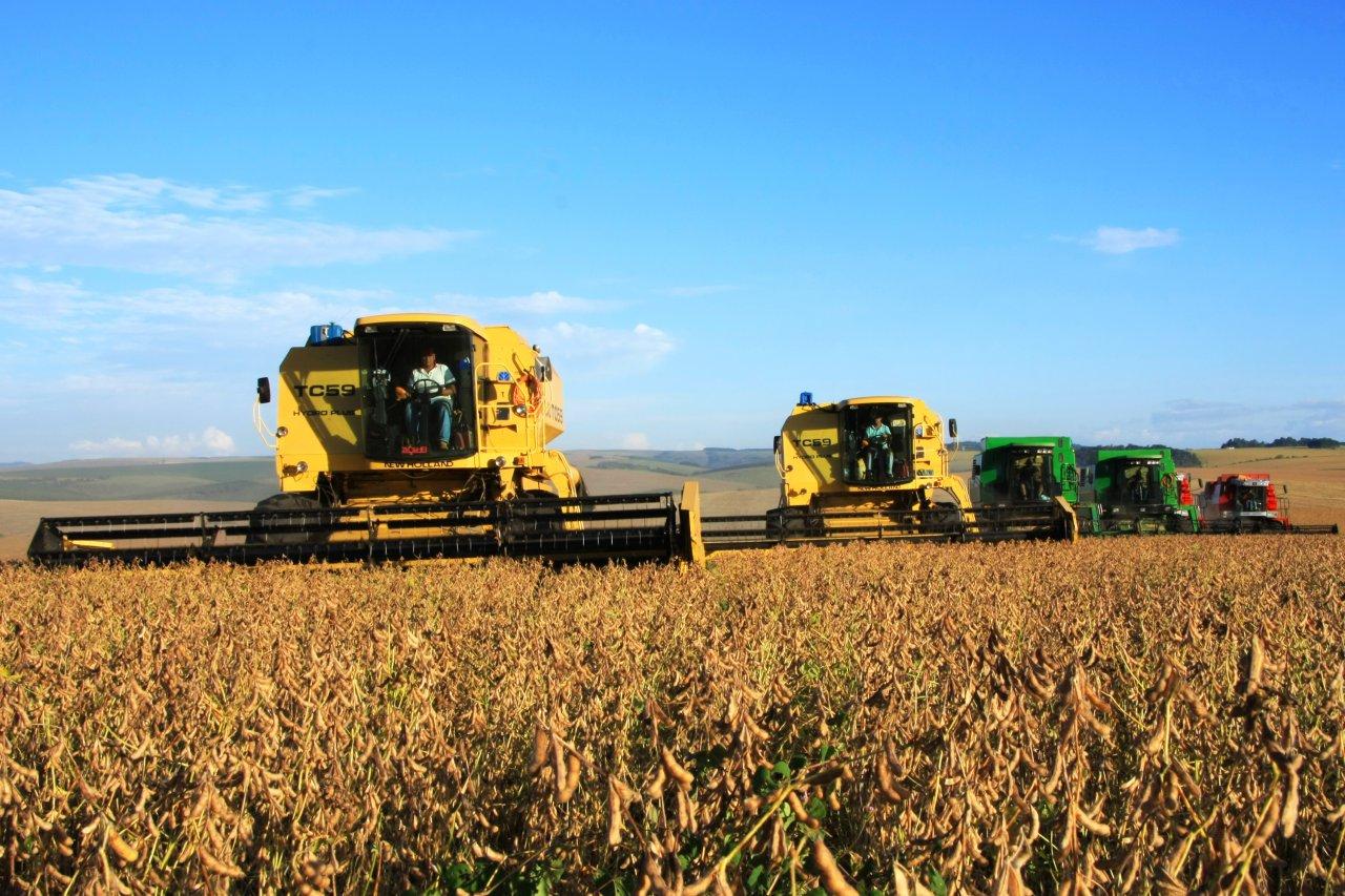 Paraná deve colher 23 milhões de toneladas de grãos